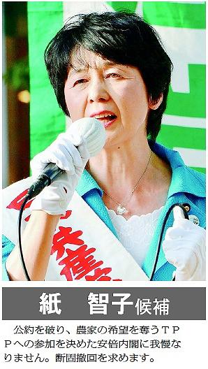 紙 智子候補 公約を破り、農家の希望を奪うTPPへの参加を決めた安倍内閣に我慢なりません。断固撤回を求めます。