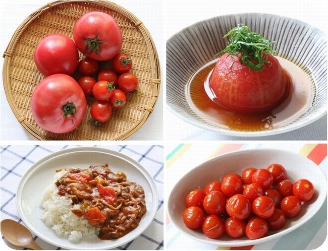 トマト4.jpg