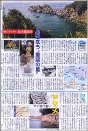 たび・すさみ町枯木灘.jpg