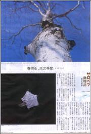 サロベツモモンガ.jpg