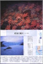 七つの海マゼラン海峡.jpg