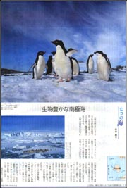七つの海・南極海.jpg