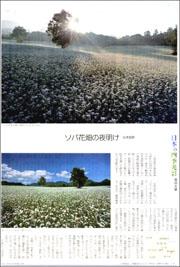 会津高原ソバ畑180.jpg