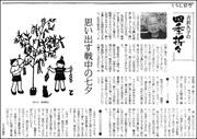 吉沢四季七夕180.jpg