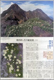 日本の山・八ケ岳.jpg