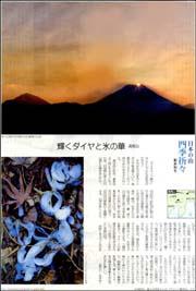 日本の山高尾山.jpg