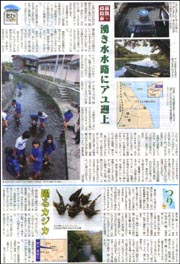 滋賀・高島・湧き水.jpg
