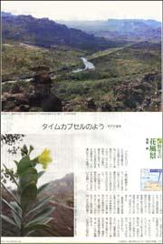 花風景ギアナ高地.jpg