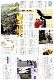 那須町ゴヨウツツジ180.jpg