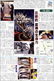 14020221nagahama180.jpg