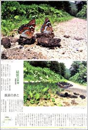 15070534butterfly180.jpg