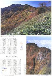 18101434Ishiduchi180.jpg