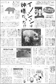 19010611wild boar180.jpg