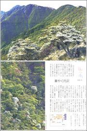 19051234Tanzawa180.jpg