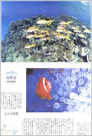 19060934Henoko180.jpg