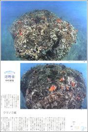 19090834Henoko180.jpg
