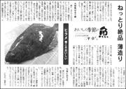 20011208flatfish180.jpg