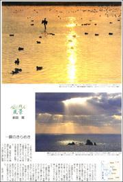 20020934Amakusa180.jpg