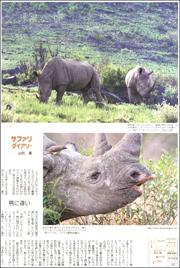 20080234rhinoceors180.jpg