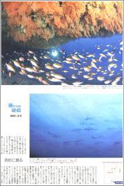 20081638Izu180.jpg