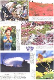 20101816reader180.jpg