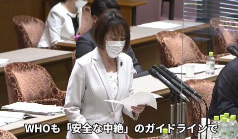 経口妊娠中絶薬の早期承認を 田村智子参院議員が質問