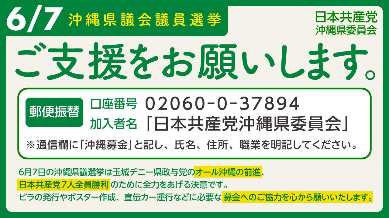 沖縄県議選(5.29告示)バナー③
