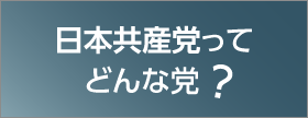 日本共産党ってどんな政党?