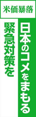 nobori_E.jpg