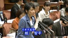 国会決議違反 TPP撤退決断を!
