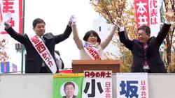 20141211_koikke.jpg