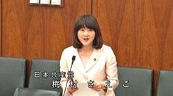 20150305_umemura_saeko.jpg